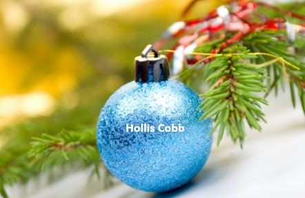 A Holiday Message to our Clients from the Team at Hollis Cobb