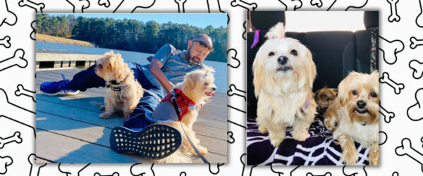 Eric and Lisa Lee's Puppies are this Week's Hollis Cobb Pets of the Week