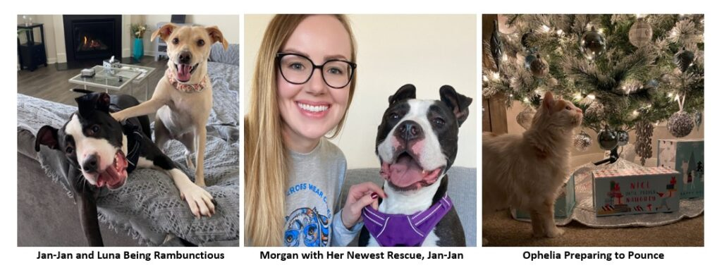 Hollis Cobb HR Financial Analyst Morgan Johnston with her Pets of the Week