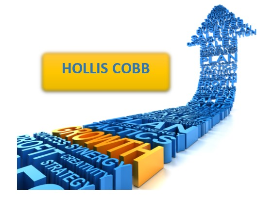 Hollis Cobb Experiences Explosive Growth In Spite of the Worldwide Pandemic